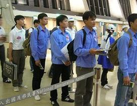 Xử phạt doanh nghiệp XKLĐ không báo cáo lao động Việt Nam về nước