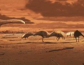 Phát hiện nhiều dấu chân lớn của khủng long vây kiếm