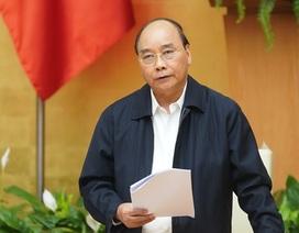 Thủ tướng: Tổ chức những chuyến bay đón người Việt thiết tha về nước