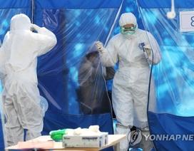 Hàn Quốc ghi nhận số ca nhiễm mới virus corona tăng trở lại