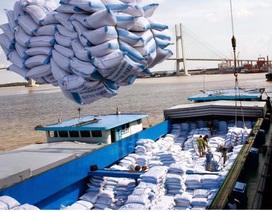 Thủ tướng nhắc nhở một số bộ, ngành về việc tham mưu xuất khẩu gạo