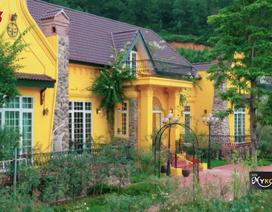 """""""Sắc màu thời đại"""" – Chương trình sẻ chia bí quyết cho ngôi nhà đẹp"""