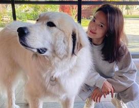 Song Hye Kyo kết thúc đợt cách ly sau chuyến đi Ý
