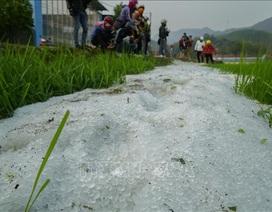 Mưa đá mật độ dày đặc tại Điện Biên