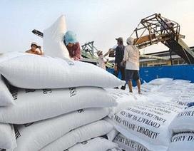 Hải quan hỏa tốc yêu cầu tạm dừng xuất khẩu gạo từ 0 giờ ngày 24/3/2020