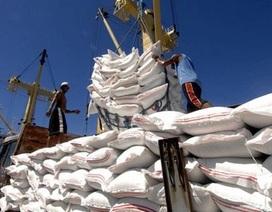 Bộ Công Thương muốn xác minh lại lượng gạo tồn kho trong dân, doanh nghiệp
