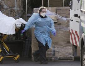 WHO: Mỹ có thể trở thành tâm chấn tiếp theo của đại dịch Covid-19