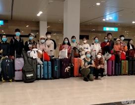 Đưa 100 người Việt mắc kẹt ở Singapore, Thái Lan về nước