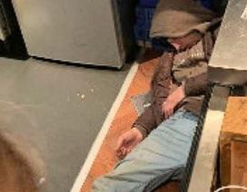 Ngủ quên trong lúc đi ăn trộm, bị cảnh sát tóm gọn