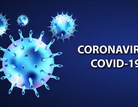 """Coronavirus chủng mới có """"bộ gene ổn định"""""""