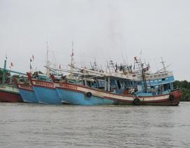Lo ngại dịch bệnh Covid-19 trước hàng ngàn ngư phủ vào cửa biển mỗi tháng