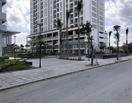 TPHCM tiến hành đánh giá tiến độ của nhiều dự án bất động sản