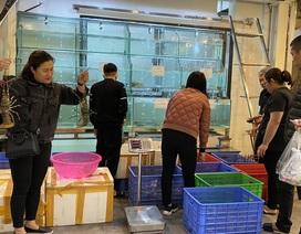 Hà Nội có cơ sở phân phối hải sản bán lẻ rẻ như bán buôn