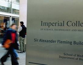 Anh: Đại học Hoàng gia London thi tốt nghiệp online mùa Covid-19