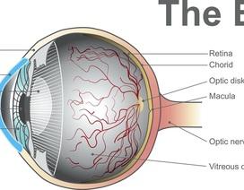 Thiết bị đặc biệt mới giúp phát hiện sớm các vấn đề về thị lực