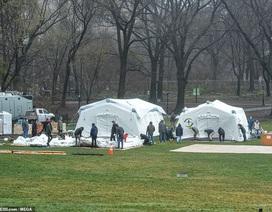 New York lập bệnh viện dã chiến trong công viên Central Park