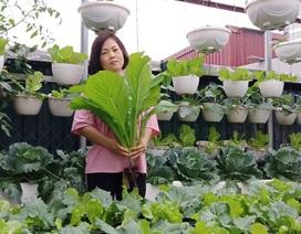 """Mãn nhãn """"khu vườn trên mây"""" tốt như nông trại của ông bố đảm Hà Nội"""