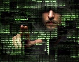 Phát hiện chiến dịch tấn công mạng nhằm vào người dùng châu Á