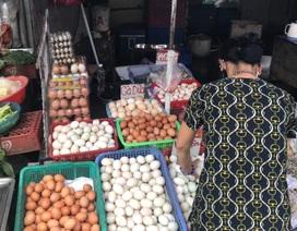 Tránh dịch, khách mua... 250 quả trứng vịt lộn, người bán đếm còng lưng