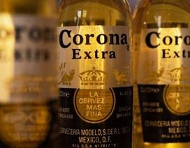 Mexico dừng sản xuất bia Corona trong đại dịch Covid-19