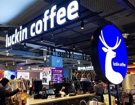 """Cà phê Trung Quốc """"lao dốc"""" không ngừng sau vụ giả mạo doanh thu """"khủng"""""""