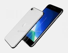 Apple vô tình làm lộ thông tin iPhone 9 và sản phẩm chưa ra mắt