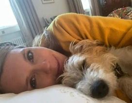 Bạn gái mang bầu của Thủ tướng Anh đang hồi phục sau triệu chứng Covid-19