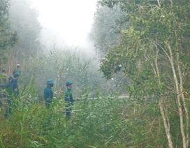 Khô hạn gay gắt, liên tiếp cháy rừng ở U Minh Hạ