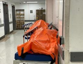 Thi thể nằm chồng chất tại bệnh viện Mỹ