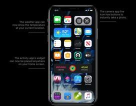 """Apple sẽ mang những tính năng """"hot"""" trên Android lên iOS 14"""