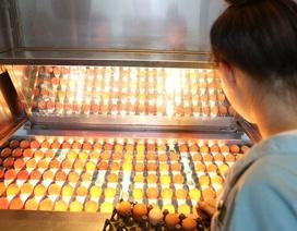 """""""Ông trùm"""" ngành trứng, thịt """"gặt lãi"""" tăng gấp 17 lần giữa dịch Covid-19"""