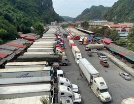 Bộ Nông nghiệp đề nghị tạm dừng đưa hoa quả lên cửa khẩuLạng Sơn