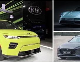 """Giải """"Xe của năm 2020"""" gọi tên xe Hàn"""