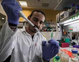 70 vắc xin trị Covid-19 đang được phát triển