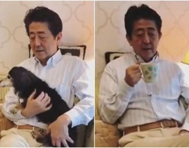 Đăng video ở nhà giữa dịch Covid-19, Thủ tướng Nhật Bản bị chỉ trích
