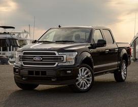 Ford triệu hồi hàng chục ngàn xe bán tải do trục trặc hộp số