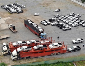 Việt Nam nhập khẩu xe từ Indonesia nhiều hơn từ Thái Lan