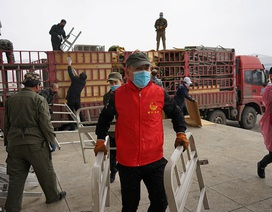 Trung Quốc thi công khẩn bệnh viện dã chiến ở biên giới Nga