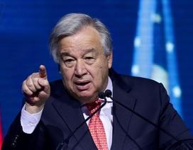 """Tổng thư ký Liên Hợp Quốc: """"Giờ không phải lúc cắt các nguồn lực cho WHO"""""""