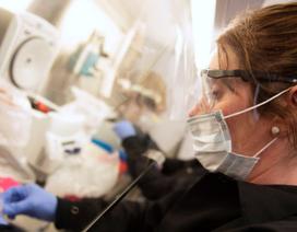 Nghịch lý: Nhiều bệnh viện Mỹ phải sa thải nhân viên dù đang bị quá tải