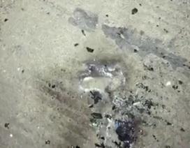 Đề nghị công an điều tra vụ trạm BOT Ninh Xuân bị ném bom xăng