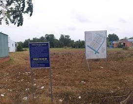 UBND tỉnh Long An gỡ rối dự án tái định cư chậm tiến độ 13 năm