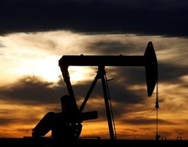 Giá dầu xuống dưới 0 USD/thùng: Hàng trăm công ty dầu mỏ Mỹ sẽ phá sản?