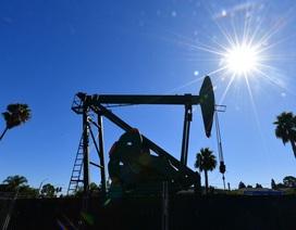 """Chính quyền ông Trump """"bối rối"""" không biết làm sao khi giá dầu xuống mức âm"""