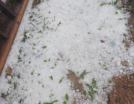 Mưa đá, lốc xoáy càn quét làm hàng trăm ngôi nhà hư hỏng