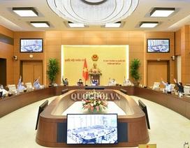 Thành lập 3 thị xã mới tại Thanh Hóa, Phú Yên, Bình Định