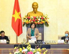 Chủ tịch Quốc hội lên tiếng về việc điều hành xuất khẩu gạo
