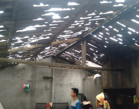 Mái nhà thủng hàng trăm lỗ vì mưa đá