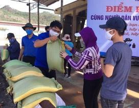 Bình Định: Hơn 3.500 công nhân mất việc được nhận gạo miễn phí