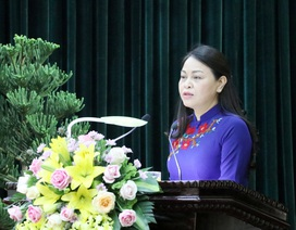 Chân dung tân Bí thư Ninh Bình Nguyễn Thị Thu Hà